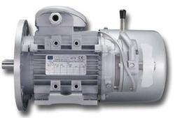 3 Phase Motors