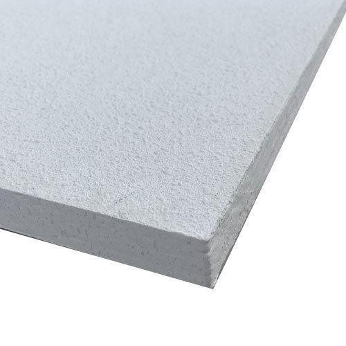 Acoustic Tile Ceiling