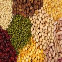 Agro Intermediates