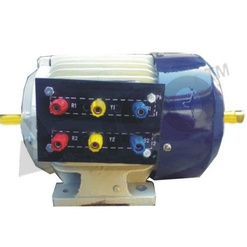 Cage Induction Motor