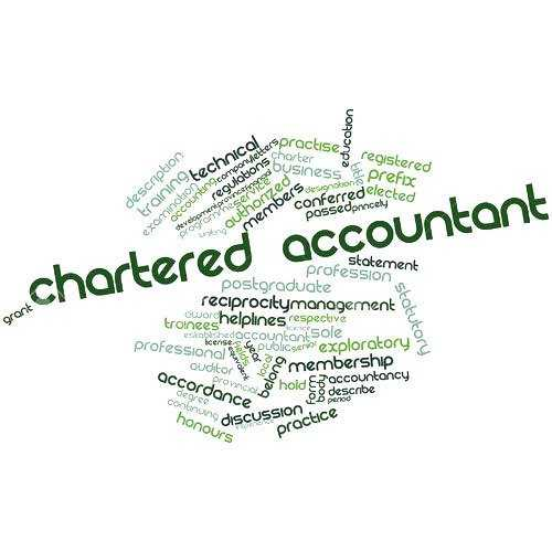 Chartered Accountants Services