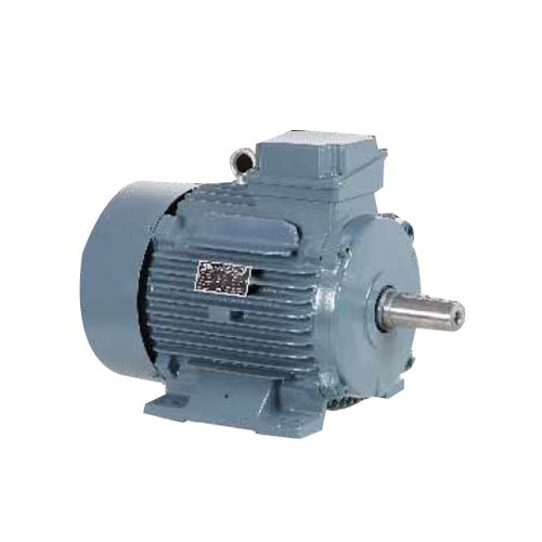 Induction Electrical Motor