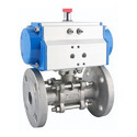 Pneumatic Valve Actuators