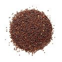 Mustard seeds for sowing
