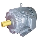 Siemens Induction Motors