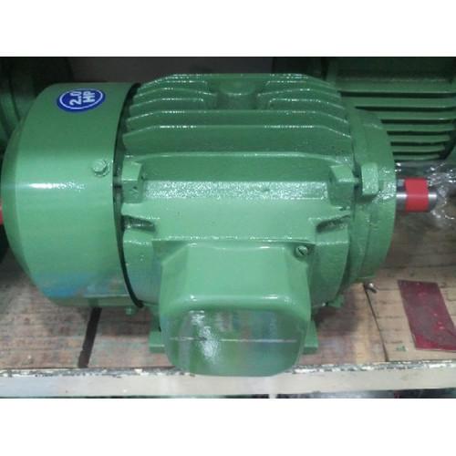 Submersible Pump Motor