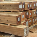 OTHER TROPICAL WOODS SAWN AND CHIPPED