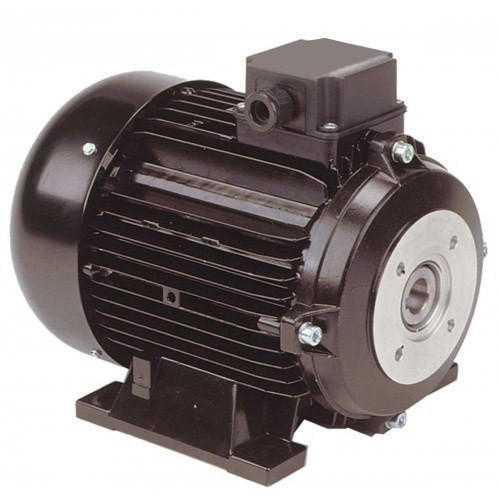 Vertical Shaft Motor