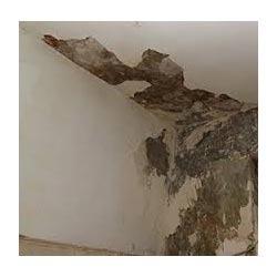 Walls Repair