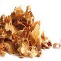 Coniferous wood in chips or particles