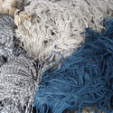 Noils of wool or of fine animal hair, non-carbonised